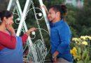 म्युजिक भिडियो 'माया लाउँ कि नलाउँ भो'  सार्वजनिक