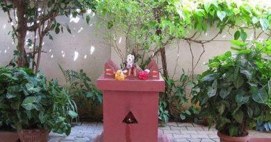 हरिशयनी एकादशी घर-घरमा तुलसी रोपेर मनाइँदै